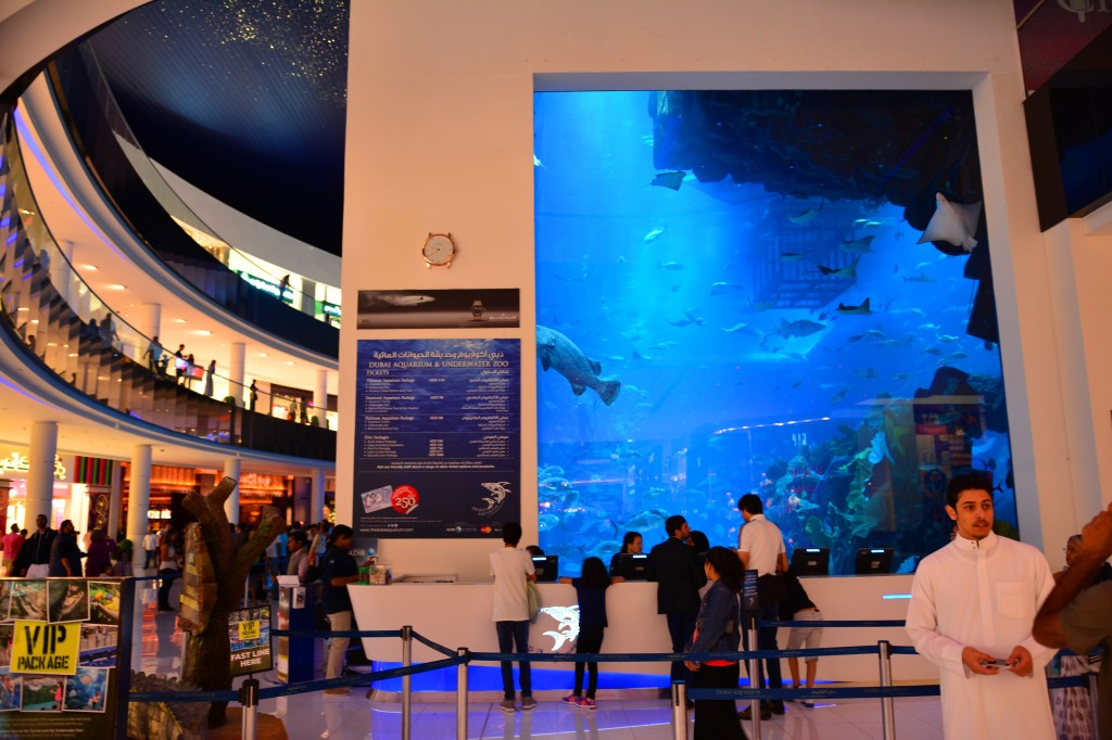 world's largest aquarium in a mall? probably