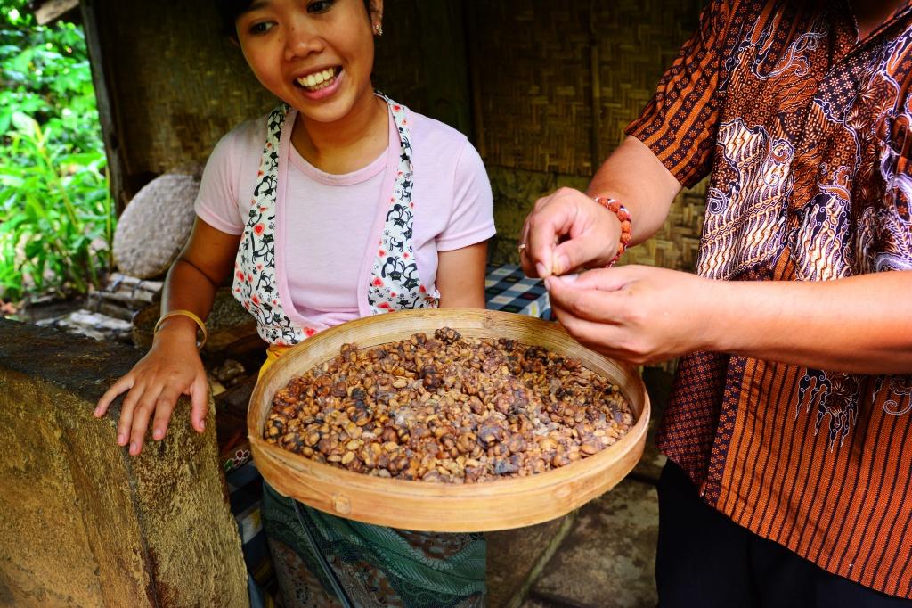 the famous luwak coffee